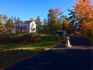 Our Home in Nova Scotia